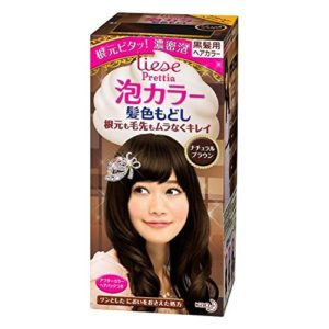 LIESE KAO Japan Prettia AWA Hair Color Natural Brown