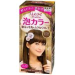 LIESE KAO Japan Prettia Bubble Hair Color Royal Brown