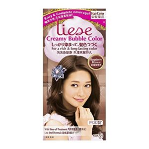 LIESE KAO Japan Prettia Bubble Hair Color Raspberry Brown