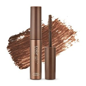 Etude House Color MyBrows Number 1 Rich Brown