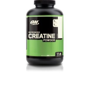 Optimum Nutrition Micronized Creatine Powder 600 g Unflavored