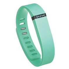 Fitbit Flex Wireless Activity Plus Sleep Teal Wristband